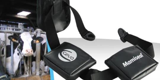 Fabricant de ceinture rangement materiel technique sante animal