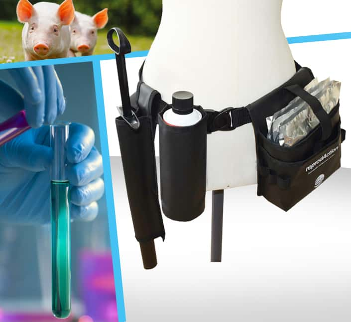 Conception de ceinture technique rangement matériel industriel